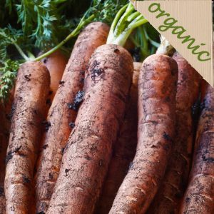 Zeds Organic Dirty Carrots – Approx 1kg