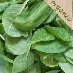 Zeds Organic (UK) Spinach – 200-250g