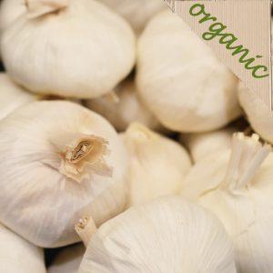 Zeds Organic Garlic – 2  (Spain)