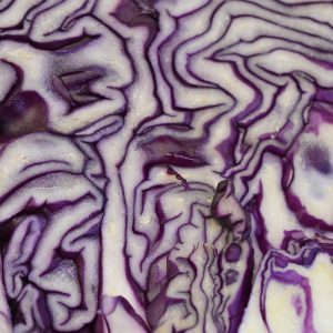 Zeds (esp) Red Cabbage – 1 medium head or half a very large one
