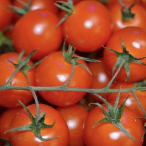Zeds (Italy) Vine Cherry Tomatoes – Approx 250g