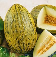 Zeds Organic Piel De Sapo Melons – Each
