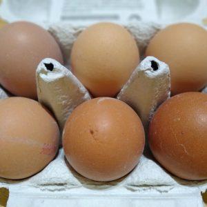 Large Free Range Eggs – 6 Pack