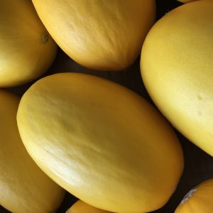 Zeds Melons Mixed varieties – Each