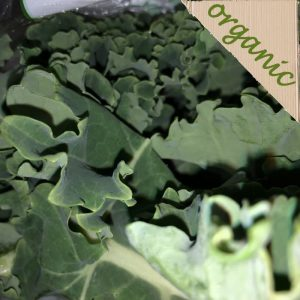 Zeds Organic Curly Green Kale – 250g Bag (UK)