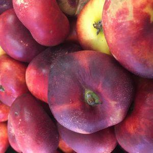 Zeds Nectarine – 10 x punnet