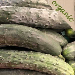 Zeds Organic Cucumber