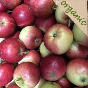 Organic and Seasonal English Apples (3-6 Depending on size)