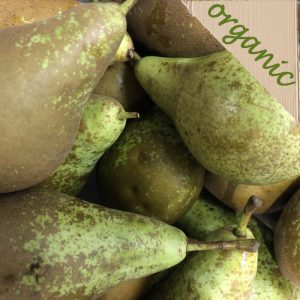 Zeds Organic CONFERENCE Pears – 2 Pieces