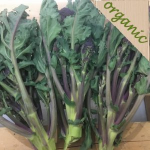 Zeds Organic Purple Sprouting Broccoli – 3 Heads