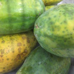 Zeds Organic Papaya – each
